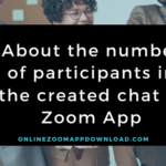 About the number of participants in the created chat in Zoom App