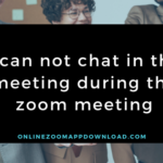 I can not chat in the meeting during the zoom meeting