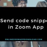 Send code snippet in Zoom App
