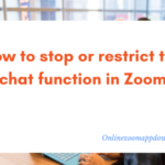 How to stop or restrict the chat function in Zoom
