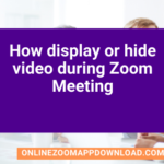 How display or hide video during Zoom Meeting