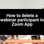 How to delete a webinar participant in Zoom App