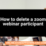 How to delete a zoom webinar participant