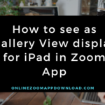How to see as Gallery View display for iPad in Zoom App