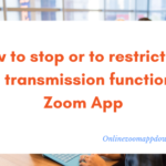 How to stop or to restrict the file transmission function in Zoom App