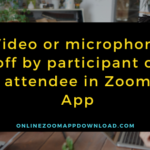 Video or microphone off by participant or attendee in Zoom App