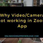 Why Video/Camera not working in Zoom App